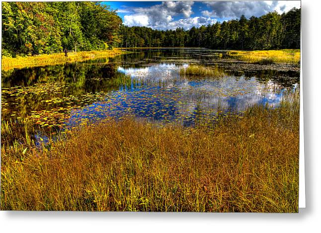 Aderondacks Greeting Cards - The Beautiful Fly Pond Near Old Forge New York Greeting Card by David Patterson