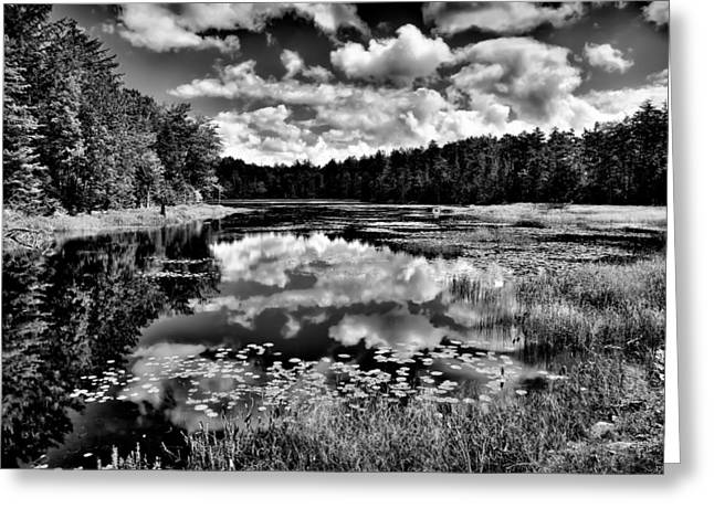 The Beautiful Fly Pond on Rondaxe Road - Old Forge NY Greeting Card by David Patterson