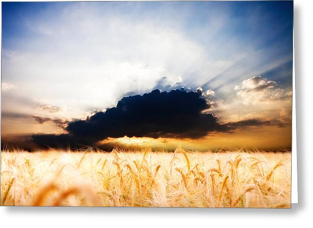 The Beautiful Sunset Greeting Card by Boon Mee