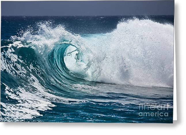 Biology Pyrography Greeting Cards - The Beautiful Wave Greeting Card by Boon Mee