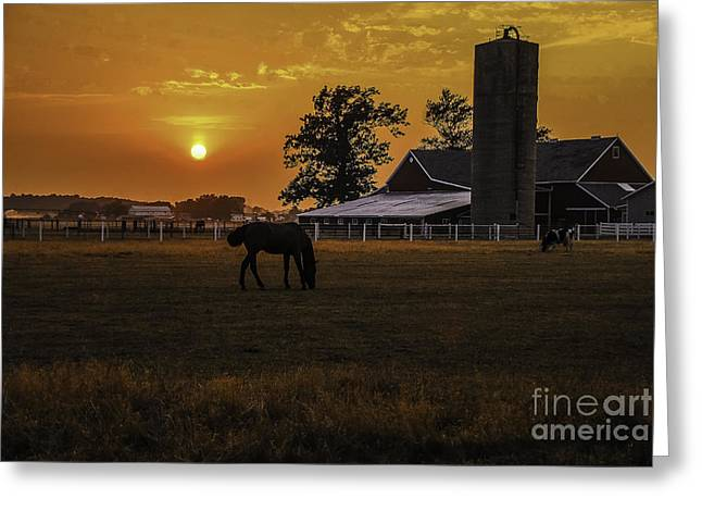 A Summer Evening Greeting Cards - The Beauty of a Rural Sunset Greeting Card by Mary Carol Story
