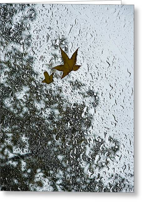 Overhang Greeting Cards - The Beauty of Autumn Rains - a Vertical View Greeting Card by Georgia Mizuleva