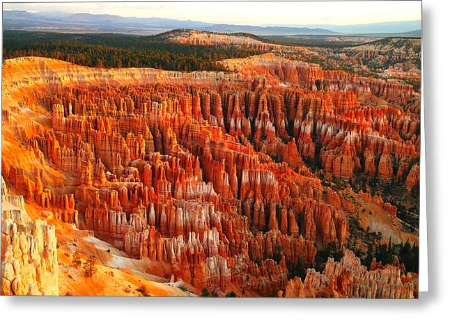 Geology Photographs Greeting Cards - The Beauty Of Bryce Canyon In The Morning Greeting Card by Jeff  Swan