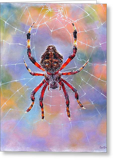Web Paintings Greeting Cards - The Beauty of Color Greeting Card by Cara Bevan