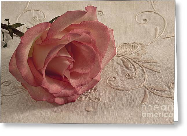 Flower Design Greeting Cards - The Beauty Of Just One Rose Greeting Card by Sandra Foster
