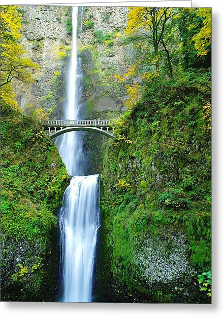 Falling Water Creek Greeting Cards - The Beauty Of Multnomah Falls Greeting Card by Jeff  Swan