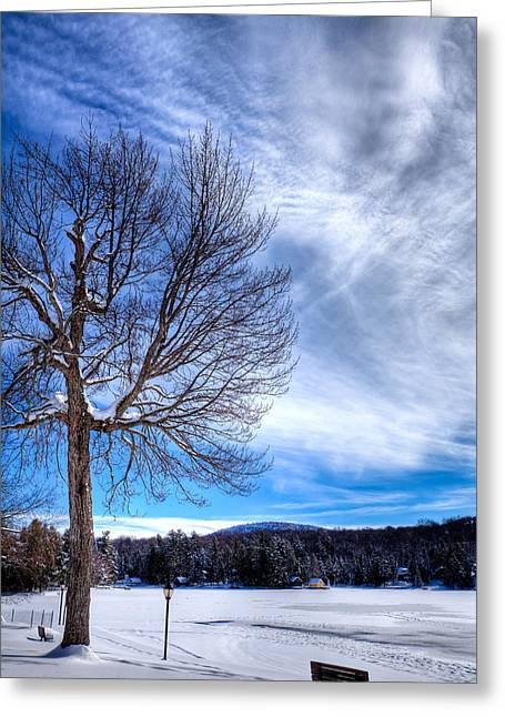 Patterson House Greeting Cards - The Beauty of Old Forge Pond Greeting Card by David Patterson