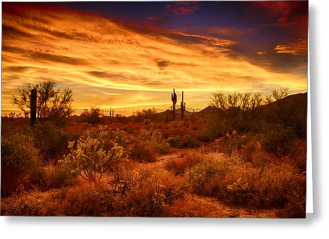 Monsoon Clouds Greeting Cards - The Beauty of the Sonoran Skies  Greeting Card by Saija  Lehtonen