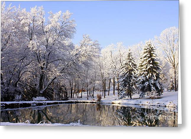 Snow Scene Landscape Greeting Cards - The Beauty Of White Greeting Card by Marcia Lee Jones