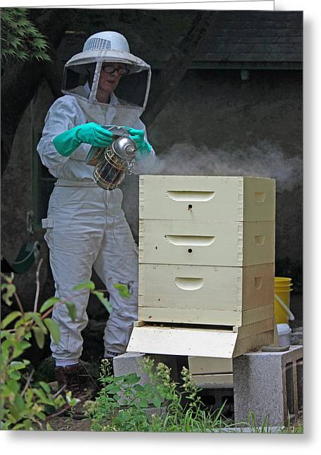 Beekeepers Greeting Cards - The Beekeeper I Greeting Card by Suzanne Gaff