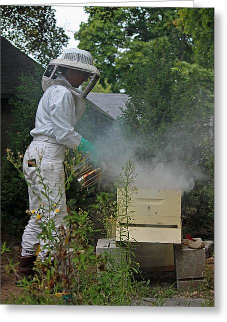 Beekeepers Greeting Cards - The Beekeeper III Greeting Card by Suzanne Gaff