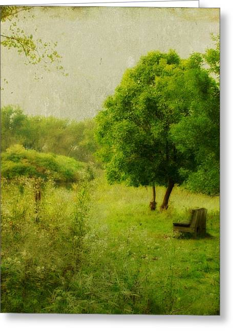 Rural Images Greeting Cards - The Bench Greeting Card by Gothicolors Donna Snyder