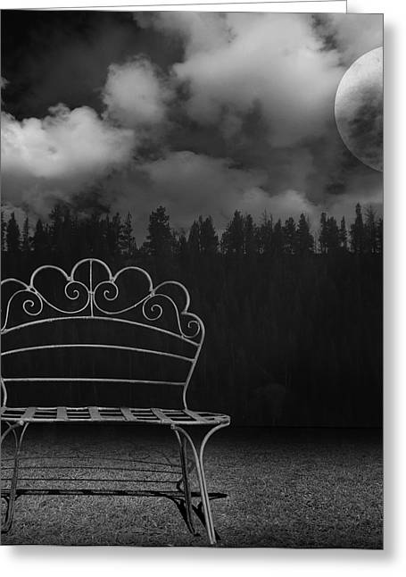 Purchase Photography Online Greeting Cards - The Bench is Back Greeting Card by Steven  Michael