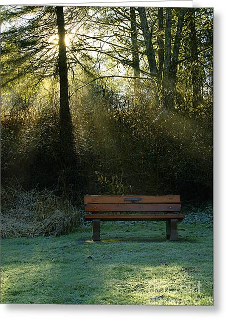Park Benches Greeting Cards - The Bench Greeting Card by Sharon  Talson
