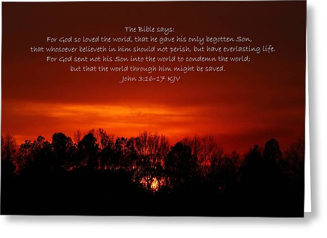 The Bible Says Greeting Card by Reid Callaway