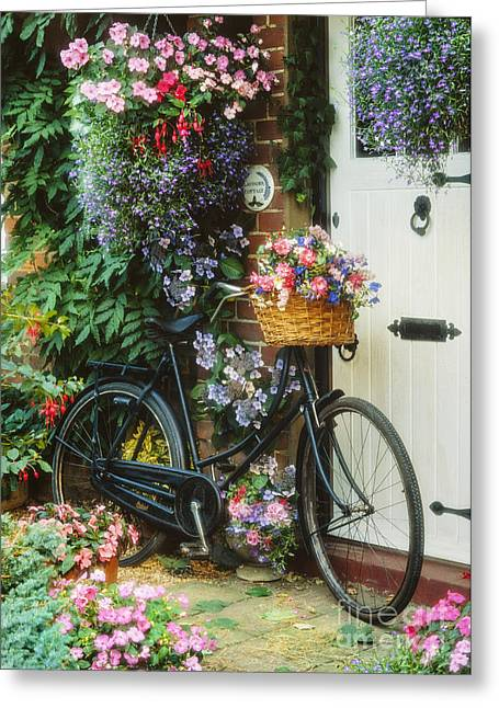 Baskets Greeting Cards - The Bicycle at Lavender Cottage Greeting Card by MGL Meiklejohn Graphics Licensing