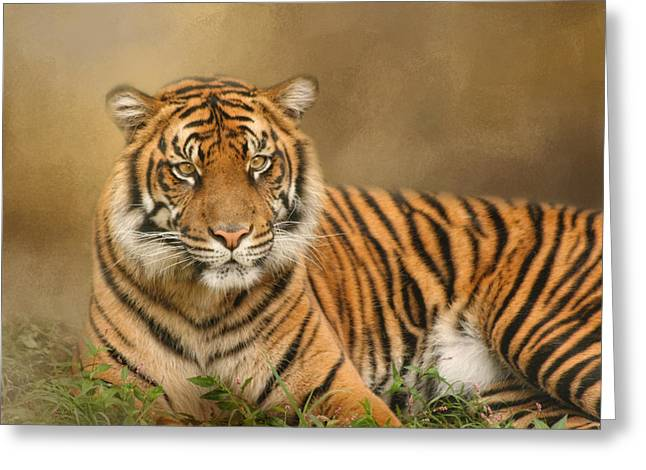 Jungle Animals Greeting Cards - The Big Cat Greeting Card by Kim Hojnacki