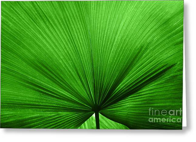 Lounge Digital Art Greeting Cards - The Big Green Leaf Greeting Card by Natalie Kinnear