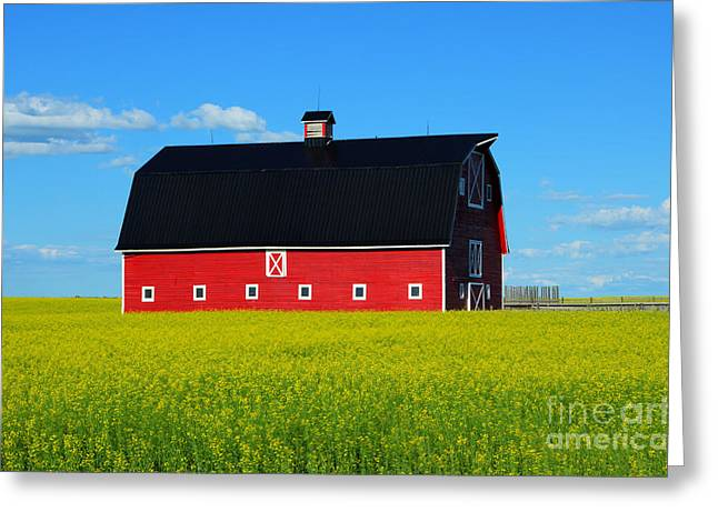 Rural Art Photographs Greeting Cards - The Big Red Barn Greeting Card by Bob Christopher