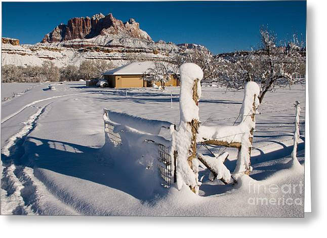 Geobob Greeting Cards - The Big Snow Rockville Utah Greeting Card by Robert Ford