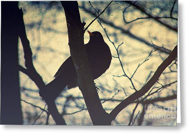 Bare Trees Mixed Media Greeting Cards - The bird Greeting Card by Angela Doelling AD DESIGN Photo and PhotoArt