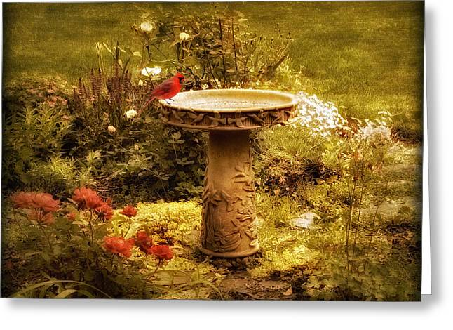 Birdbath Greeting Cards - The Birdbath Greeting Card by Jessica Jenney