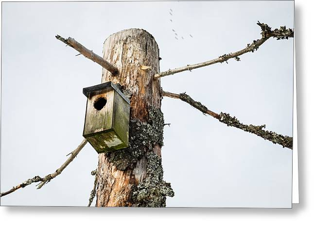 Vinter Greeting Cards - The Birdhouse Greeting Card by Jimmy Karlsson