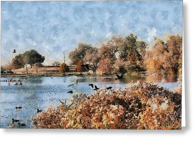 The Birds Of White Rock Lake Greeting Card by Lorri Crossno