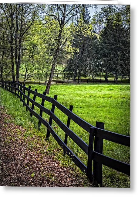 Kentucky Horse Park Photographs Greeting Cards - The Black Fence Greeting Card by Debra and Dave Vanderlaan