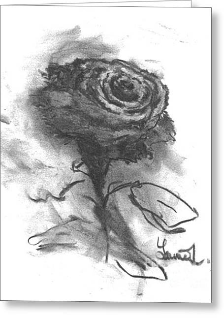 Laurie D Lundquist Greeting Cards - The Black Rose Greeting Card by Laurie D Lundquist