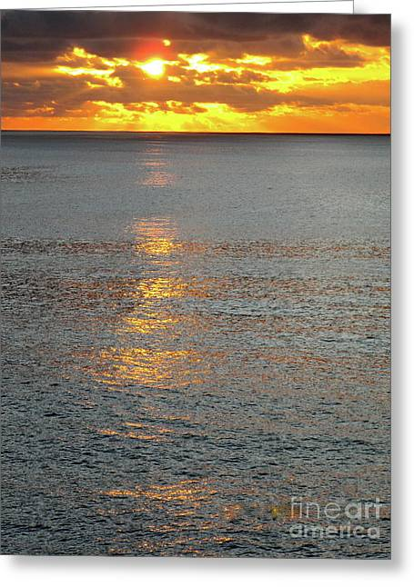 The Black Sea In A Swath Of Gold Greeting Card by Phyllis Kaltenbach