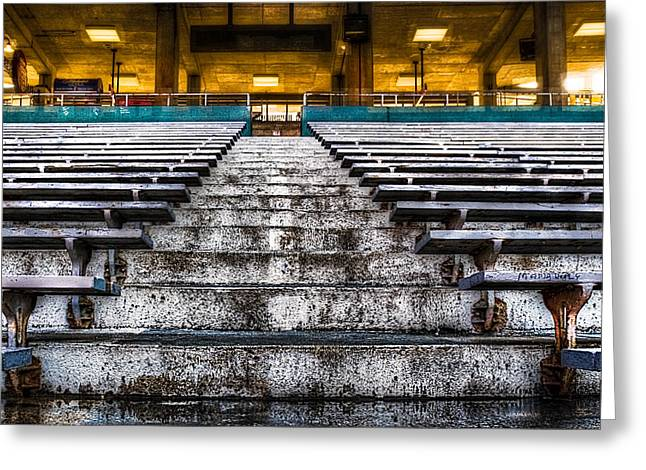 Adjectives Greeting Cards - The Bleachers Greeting Card by Robert FERD Frank