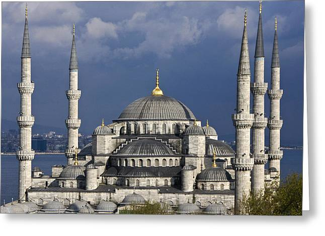 The Blue Mosque In Istanbul Greeting Card by Michele Burgess