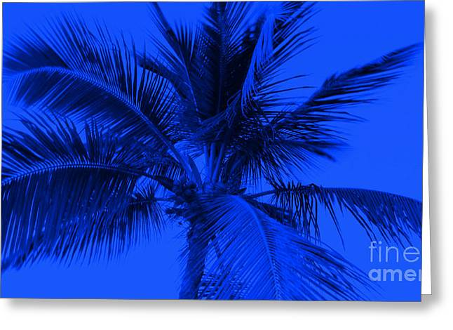 Pch Digital Art Greeting Cards - The Blue Palm Greeting Card by Timothy Curtin