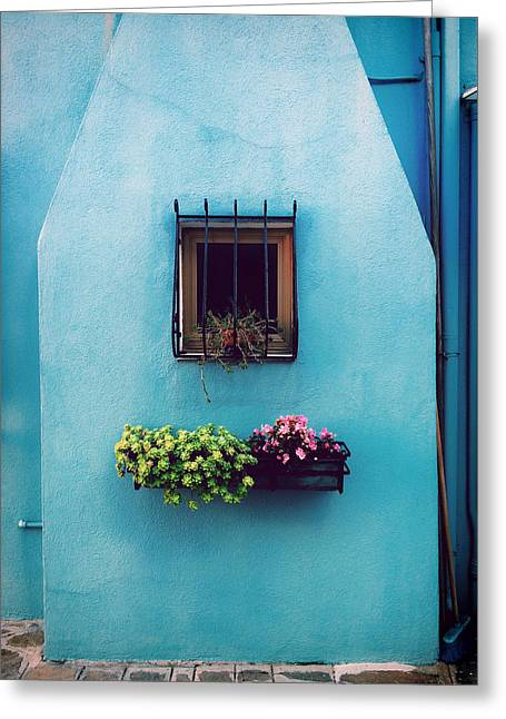 Flower Boxes Greeting Cards - The Blue Welcome Greeting Card by Mountain Dreams