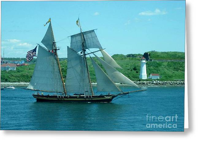 Fireboat Photographs Greeting Cards - American Tall Ship Sails Past McNabs Island Greeting Card by John Malone