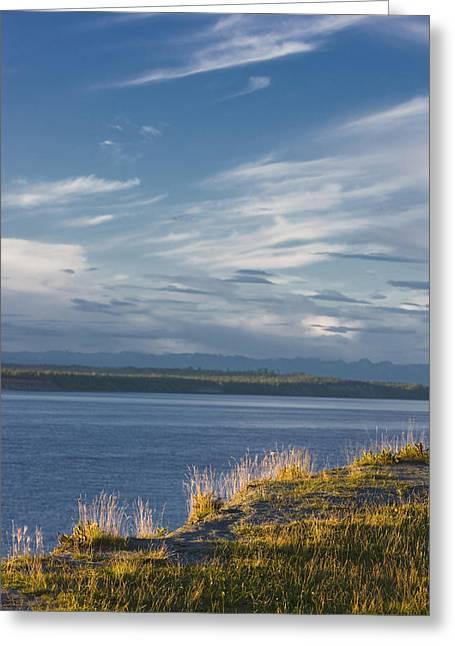 Tony Knowles Coastal Trail Greeting Cards - The Bluff Along The Tony Knowles Greeting Card by Kevin Smith