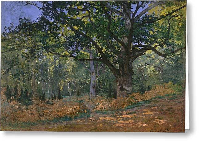 New York The Metropolitan Museum Of Art Greeting Cards - The Bodmer Oak Greeting Card by Claude Monet
