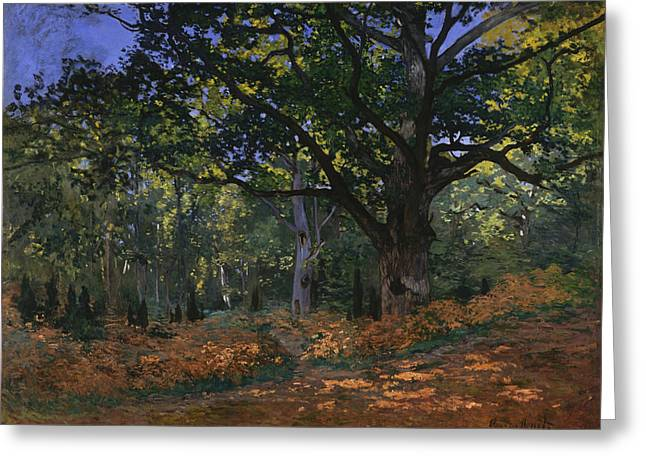 Fontainebleau Greeting Cards - The Bodmer Oak. Fontainebleau Forest Greeting Card by Claude Monet