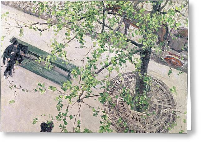 The Boulevard Viewed from Above Greeting Card by Gustave Caillebotte