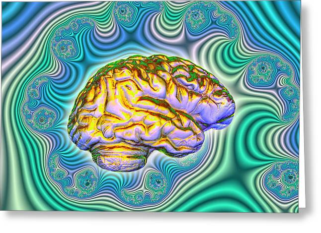 Brain Power Greeting Cards - The Brain Greeting Card by Dennis D. Potokar
