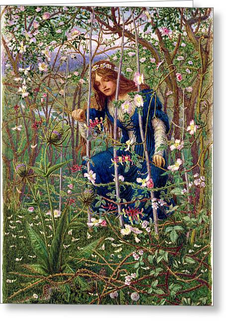 Fairies Greeting Cards - The Briar Wood Greeting Card by Woodbine K. Hinchliff