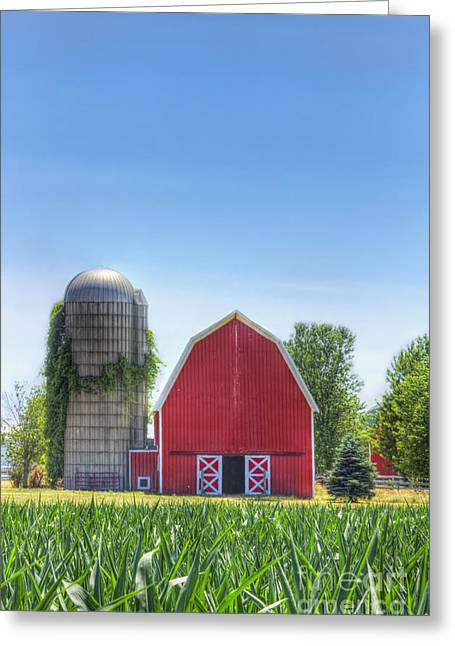 Open Land Greeting Cards - The Bright Farm Greeting Card by Margie Hurwich