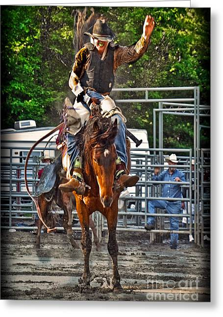 Rodeo Greeting Cards - The Bronco Rider Greeting Card by Gary Keesler