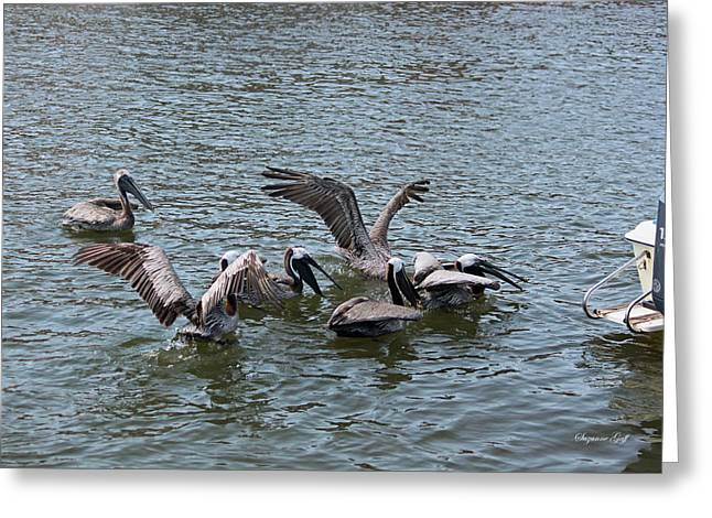 Pelicans Flying Greeting Cards - The Brunch Bunch Greeting Card by Suzanne Gaff