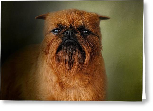 Griffon Greeting Cards - The Brussels Griffon Greeting Card by Jai Johnson