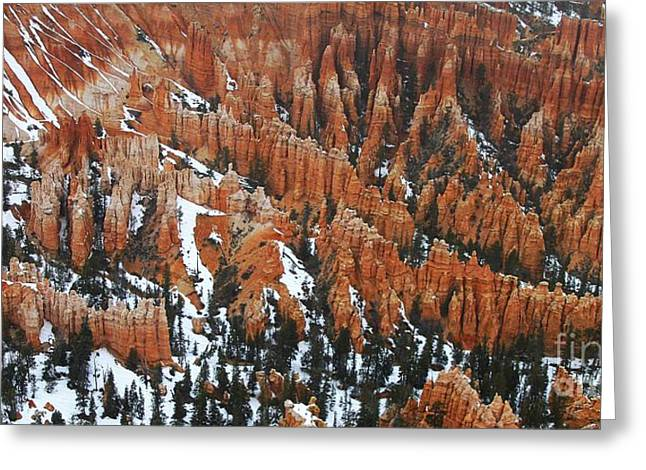 Usa Photographs Greeting Cards - The Bryce Canyon Series VII Greeting Card by Scott Cameron