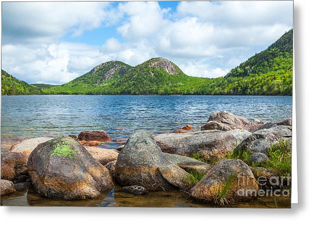 Spring In Maine Greeting Cards - The Bubbles over Jordan Pond in Acadia  Greeting Card by Susan Cole Kelly