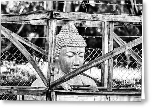 Mockery Greeting Cards - The Buddha Imprisoned Greeting Card by Paul Donohoe