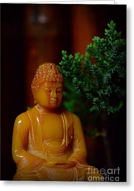 The Buddha Knows Greeting Card by Paul Ward